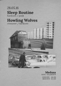 16-05-28_Sleep Routine + Howling Wolves